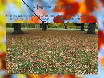 Fall (Autumn) PowerPoint