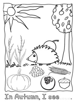 Fall / Autumn Worksheet