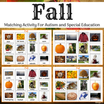 Fall Matching Activity for Autism, Special Ed and Speech Therapy
