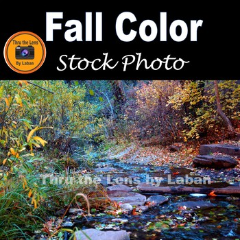 Fall Color along a Creek Stock Photo #249