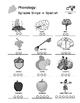 Fall - Curriculum‐Based Language Enrichment Worksheets & Activities