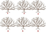 Fall Finger Print Trees
