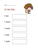 Fall Five Senses