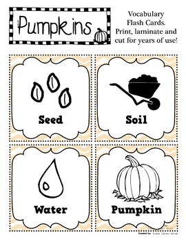 Fall Flash Cards