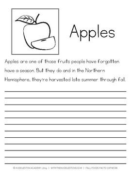 Fall Foods Facts Copywork