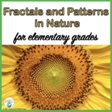 Fall Fun: Fractals and Patterns in Nature