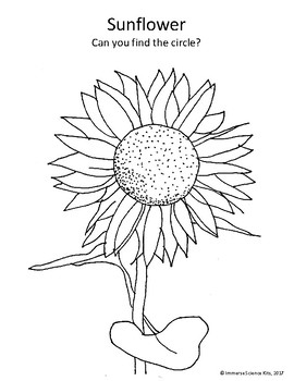 Fall Harvest Coloring pages Apple