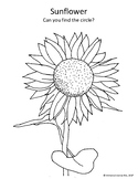 Fall Harvest Coloring pages, Apple, Sunflower, Pumpkin, Le