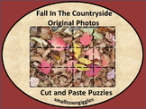 Fall Fine Motor Puzzles Kindergarten Special Education Cut Paste Activities