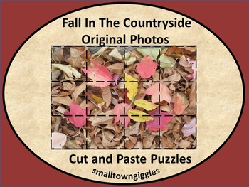 Fall Fine Motor Puzzles Kindergarten Special Education Cut Paste Activities
