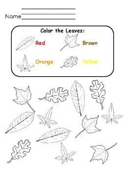 Fall Leaf Activity