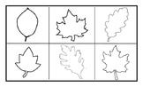 Fall Leaf Art Primary