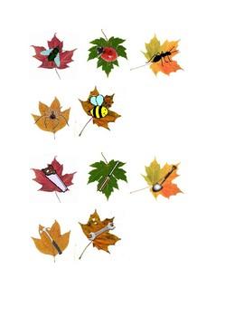 Fall Leaf Category Sort
