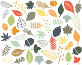 Fall Leaf Clipart, Leaf, Fall Set #186