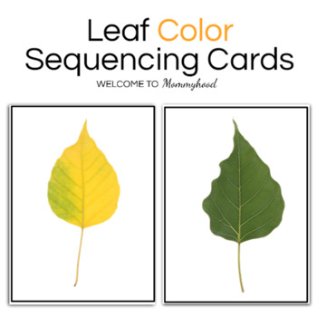 Fall Leaf Color Sequencing Cards