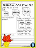 Fall Leaf Observation Sheet: Science Center Activity