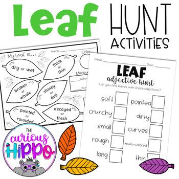 Fall Leaf Hunt