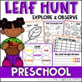 Leaf Activities for Preschool