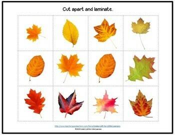 Fall Leaf Pattern