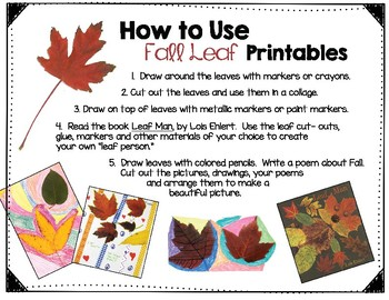 Fall Leaf Printable