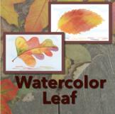 Fall Leaf - Watercolor Pencil Lesson