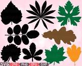 Fall Leaf clip art Autumn Leaves OAK Nature Green monogram Thanksgiving 661s