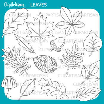Fall Leaves Clip Art, Autumn Leaves Coloring Activity