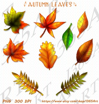 Fall Leaves Clipart 9 Pack Digital Graphics Instant Download