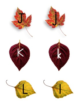 Fall Leaves Letter Matching