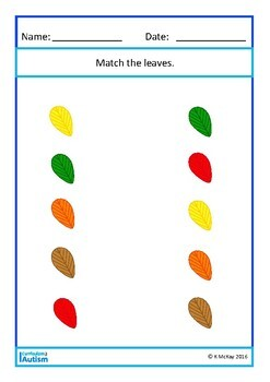 Fall Leaves Autumn Matching Basic Concepts Autism Special Education