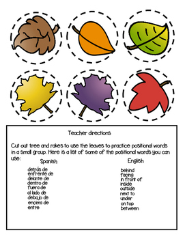 Fall Leaves Positional Words