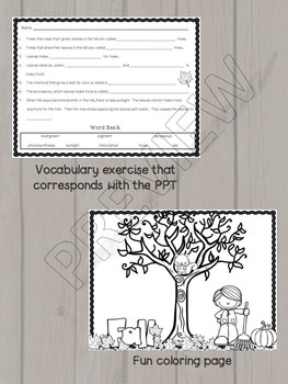 Fall Leaves Teaching Resource