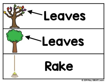 Fall Leaves Vocabulary Picture Cards