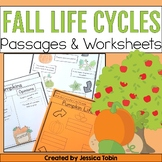 Apple Life Cycle and Pumpkin Life Cycle with Google Classr