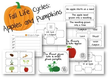 Fall Life Cycles Apples and Pumpkins Combo Pack