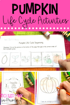 Fall Center Activities for Kindergarten