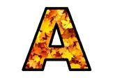 Fall, Maple Leaves, Canada, Bulletin Board Letters, Classroom Decor