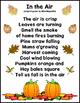 Fall Noticings