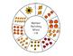 Fall Number Matching Wheel