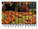 Fall Number Puzzles with Real Pictures