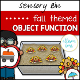 Fall Object Function Speech Therapy Sensory Bin