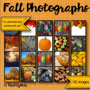 Fall Photo Backgrounds