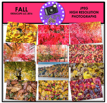 Fall Photo Set {Educlips Clipart}