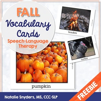Fall Picture Vocabulary Cards for Speech-Language Therapy - Freebie