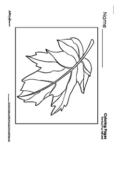Fall Printables Collection