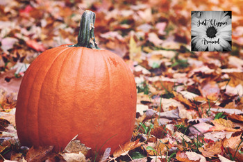 Fall Pumpkin Background By Just Clippin Around Tpt