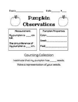 Fall Pumpkin Counting Collection/Observation