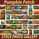 """Stock Photos - """"Pumpkin Patch"""" Fall Photo Pack BUNDLE - Arts & Pix"""