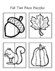 Fall Puzzels