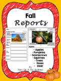Fall Mini Reports